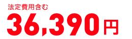 消費税抜き 42,270円